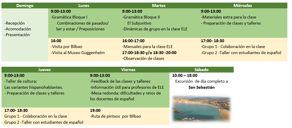 profesores-espanol-no-nativos-programa-modelo